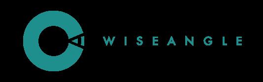 Wise Angle Logo